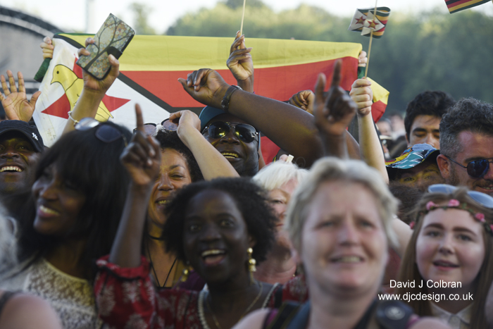 Crowd at Africa Oye 2017 Liverpool photographer
