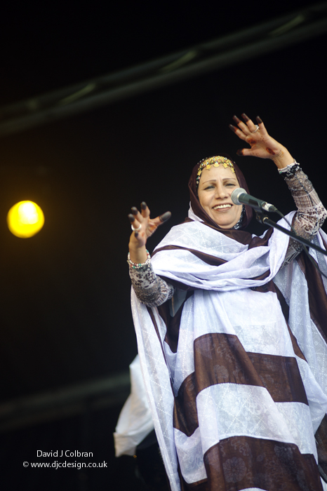 The Voice of the Sahara live in Liverpool, England, UK at Africa Oye 2011